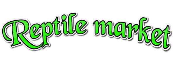 Reptile market